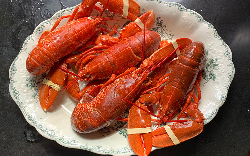 how to boil a lobster