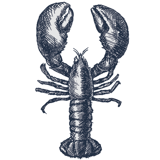 lockdown lobsters london