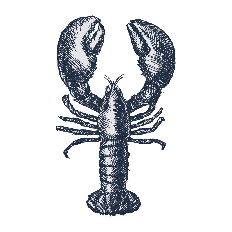 order fresh live lobsters london delivery