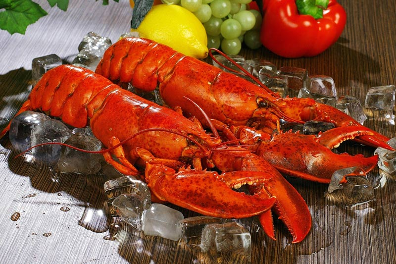 order fresh lobsters online for delivery